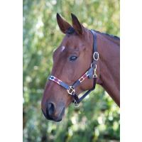 SHIRES BLENHEIM LEATHER POLO HEADCOLLAR TURQUOISE RED ORANGE & BLUE