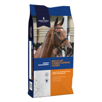 Dodson & Horrell Build Up Conditioning Cubes 20kg